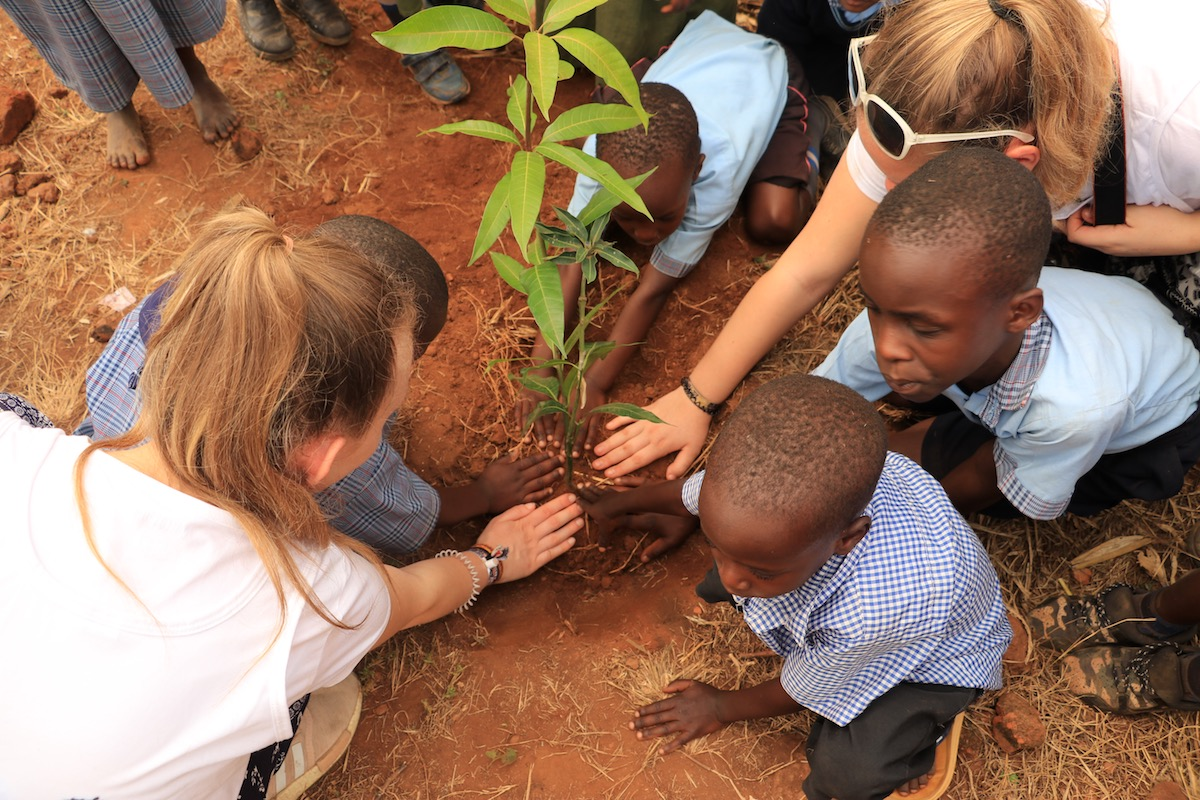 International Day of Peace and Tree Planting